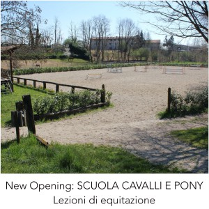 NEW OPENING: RIDING SCHOOL